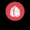 alg-frutos-de-cacara