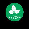 alg-soja